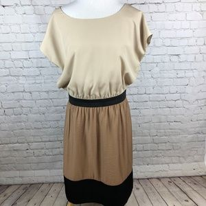 The Limited Beige Colorblock Career Dress Large